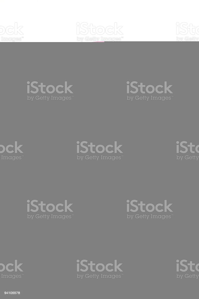 On a Diet royalty-free stock photo