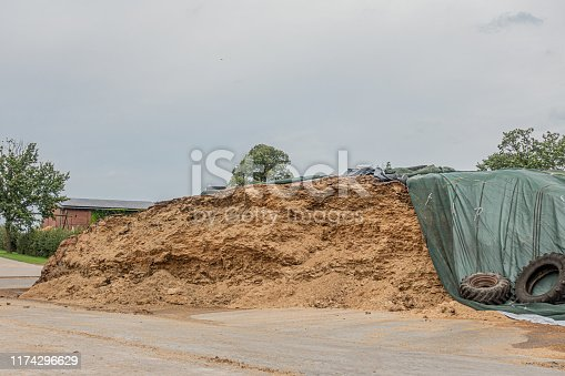 on a farm there is a huge mountain of fodder silage