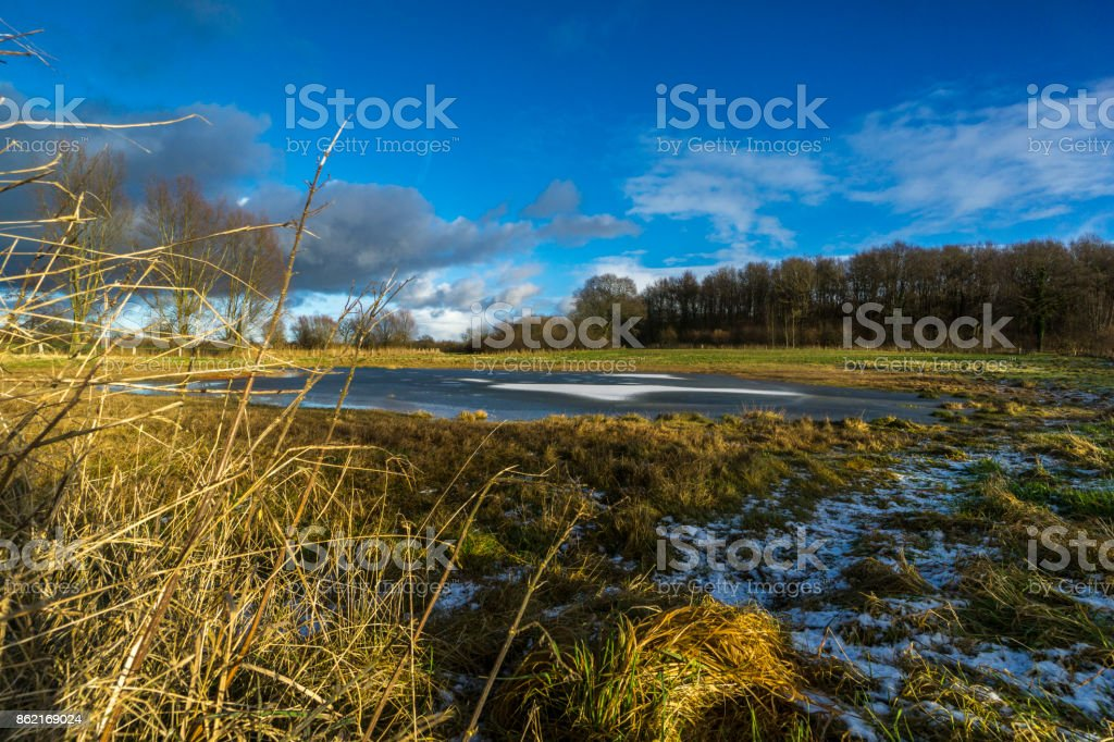 On a meadow with a half-frozen pond 2 stock photo