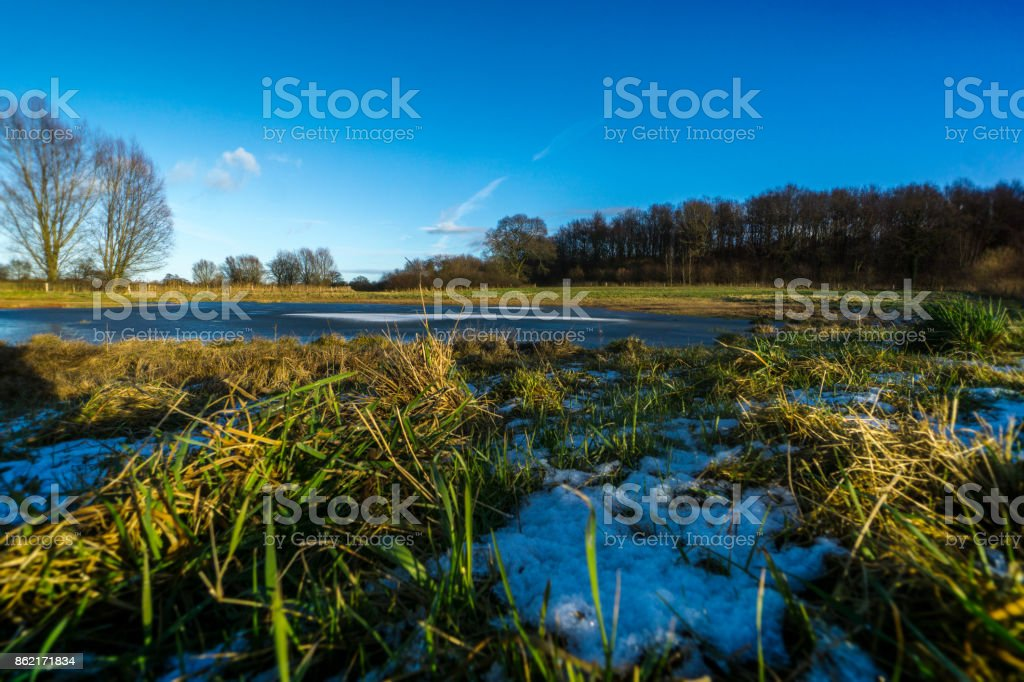 On a meadow with a half-frozen pond 4 stock photo
