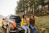 istock On a road trip with our dog 1324381802