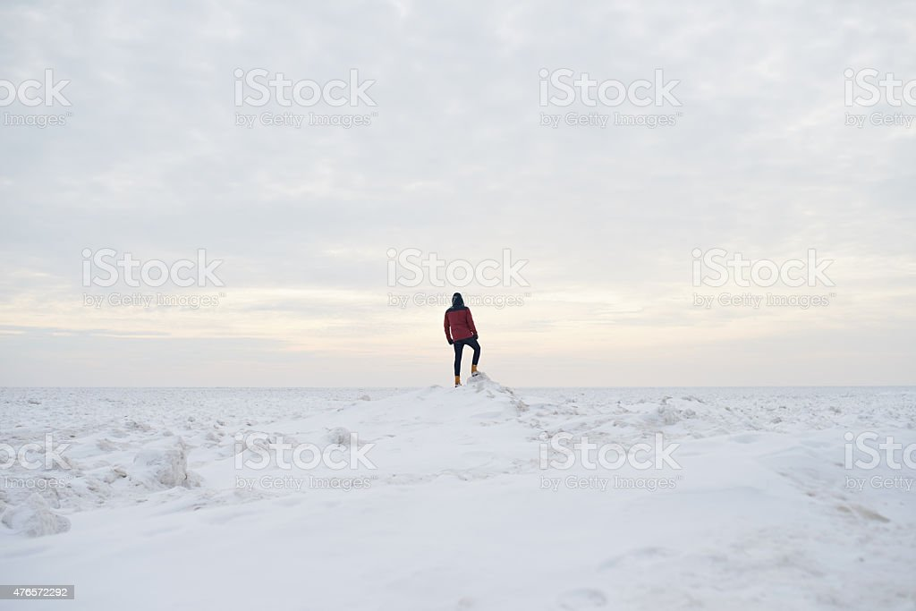 On a solitary winter adventure royalty-free stock photo