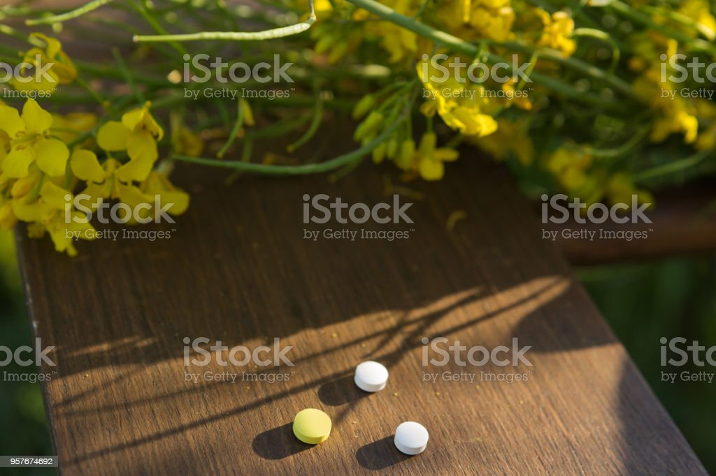 on a wooden board are two white and one yellow tablets, next to a flowering plant with yellow flowers, the concept of an allergy stock photo