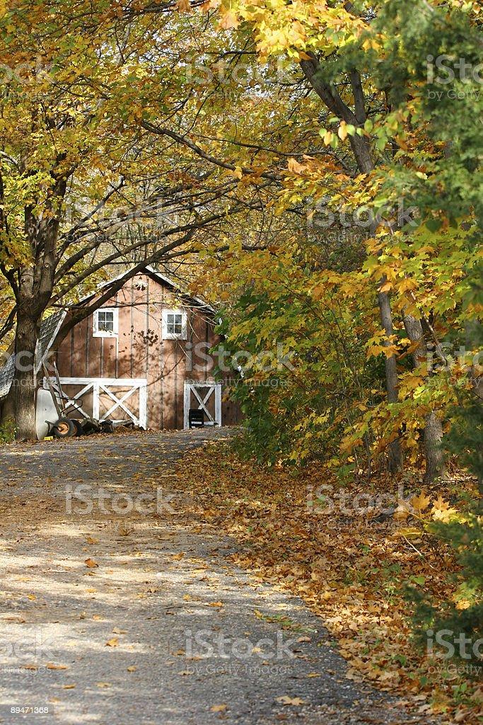 On an Autumn Morning royalty-free stock photo