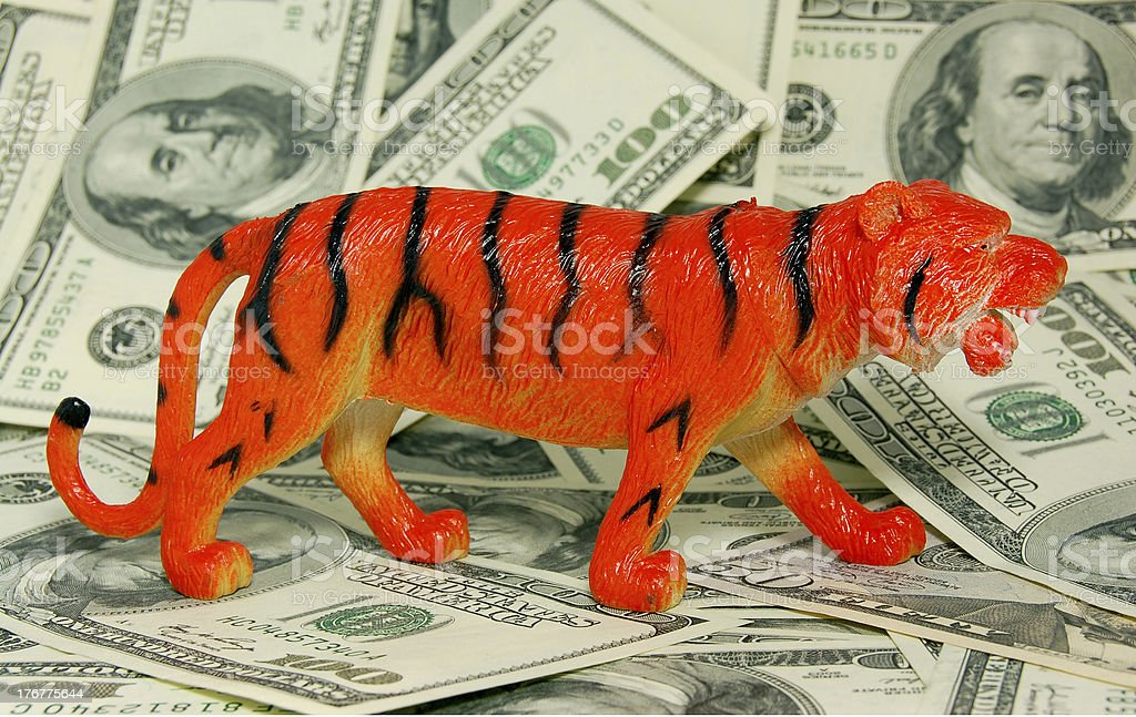 TIGER (Chinese horoscope – sign of 2010 year) on dollars background royalty-free stock photo