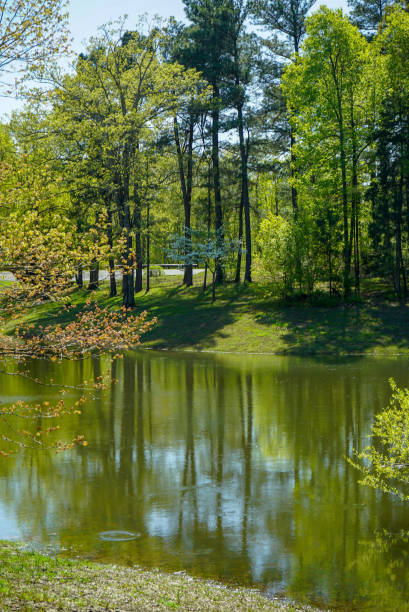 On Golden Pond stock photo