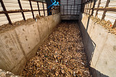 On modern plant for recycling and mechanical waste sorting pile of chips on conveyor belt after shredder grinding moved for further processing or environmentally friendly heating.