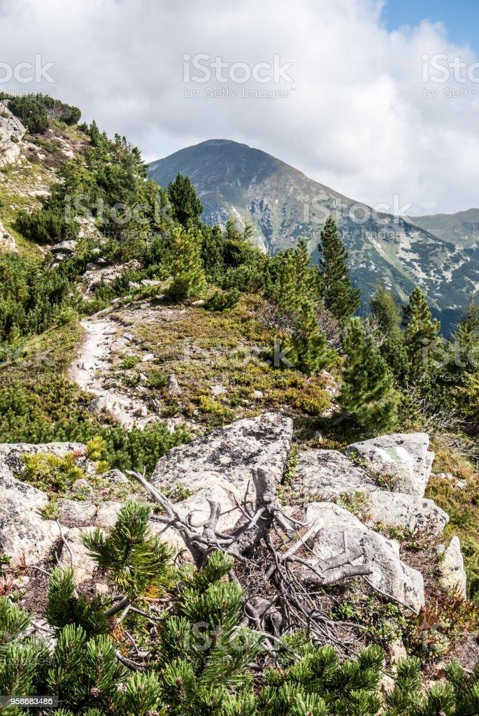 on Otrhance mountain ridge near Nizny Ostredok peak with Bystra peak...