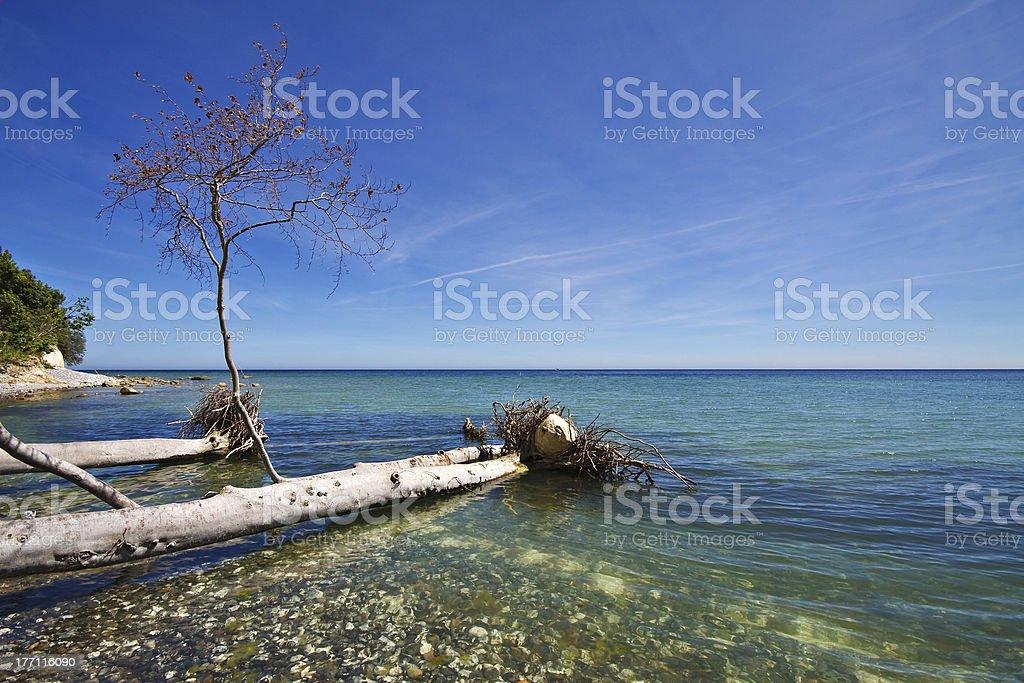 Am Land Lizenzfreies stock-foto