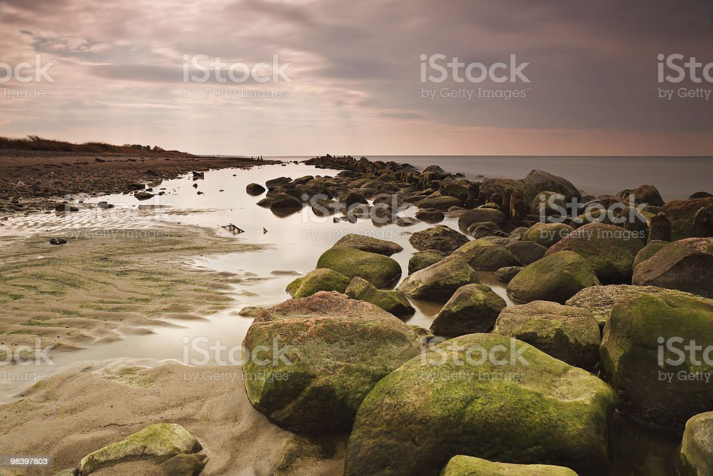 On shore royalty-free stock photo
