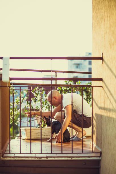 auf dem balkon - italienische lebensart stock-fotos und bilder