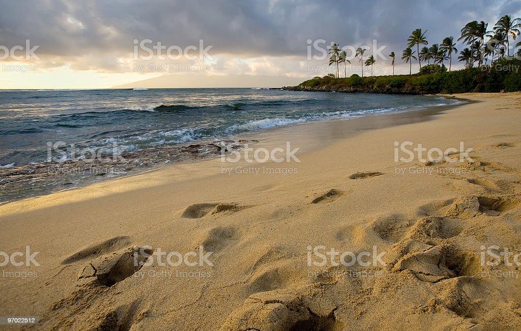 On the Beach at Sundown stock photo