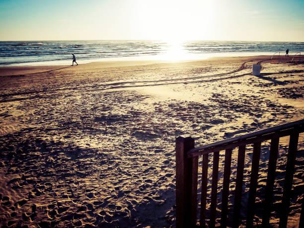 On the beach at sunset. stock photo