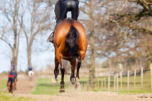 On the gallops picture id185279552?b=1&k=6&m=185279552&s=612x612&w=0&h=bcya6rzhygcymgexngxvjw j79uhax9dp1riw2moaly=