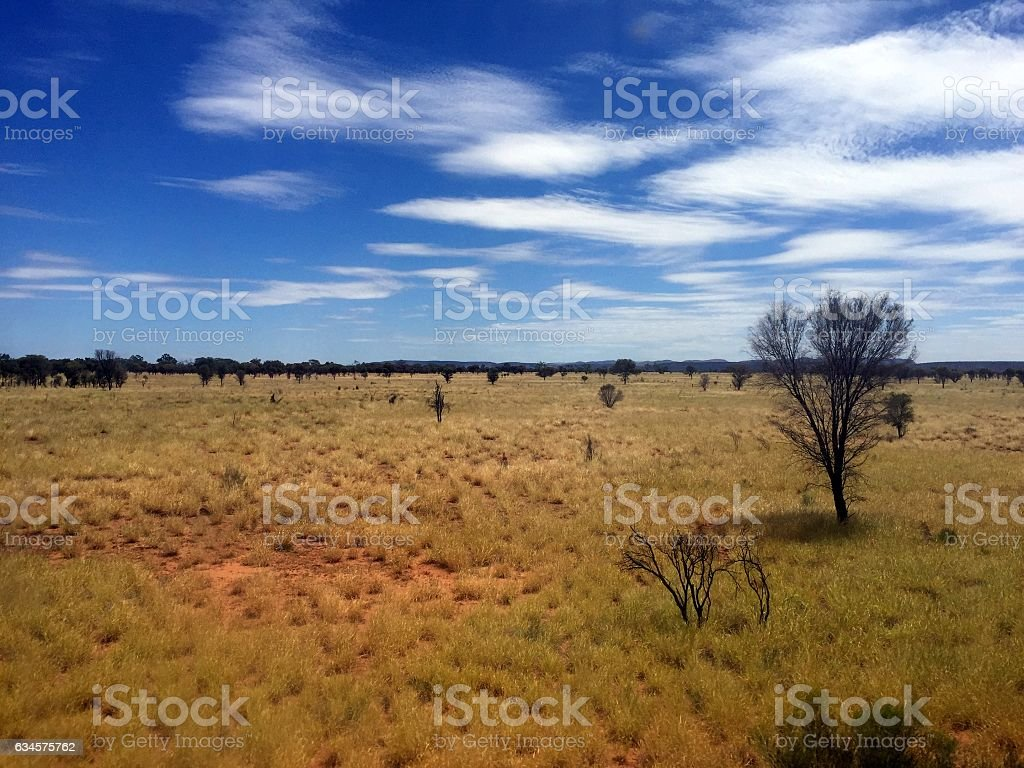 On the Ghan, looking out of the window stock photo