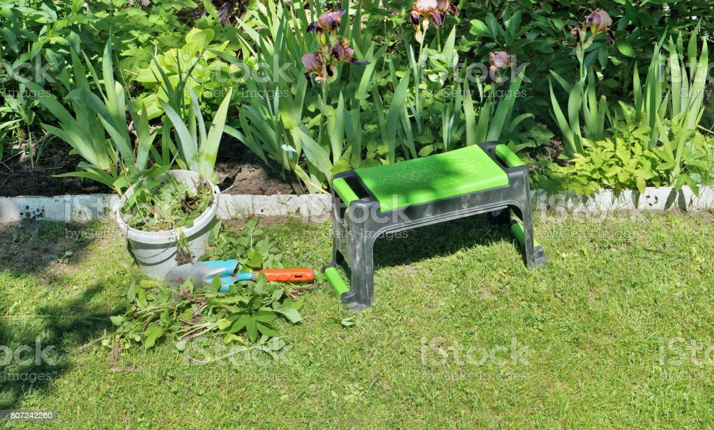 On the green lawn, there are tools for removing weeds in the summer flower bed. Sunny June garden day stock photo