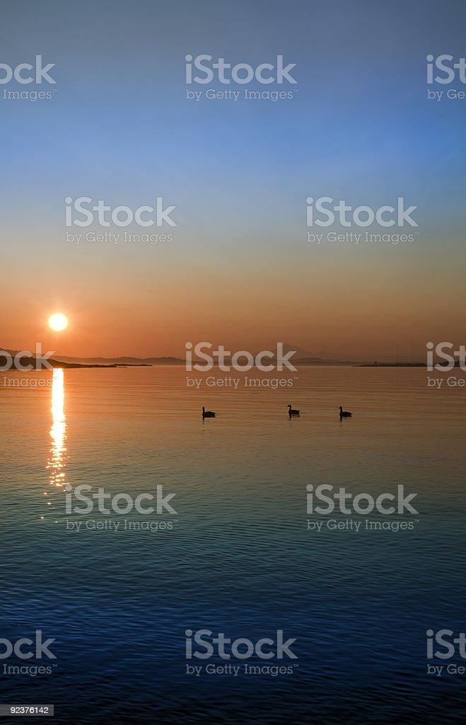 On the horizon royalty-free stock photo