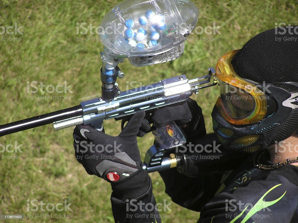 On the Hunt royalty-free stock photo