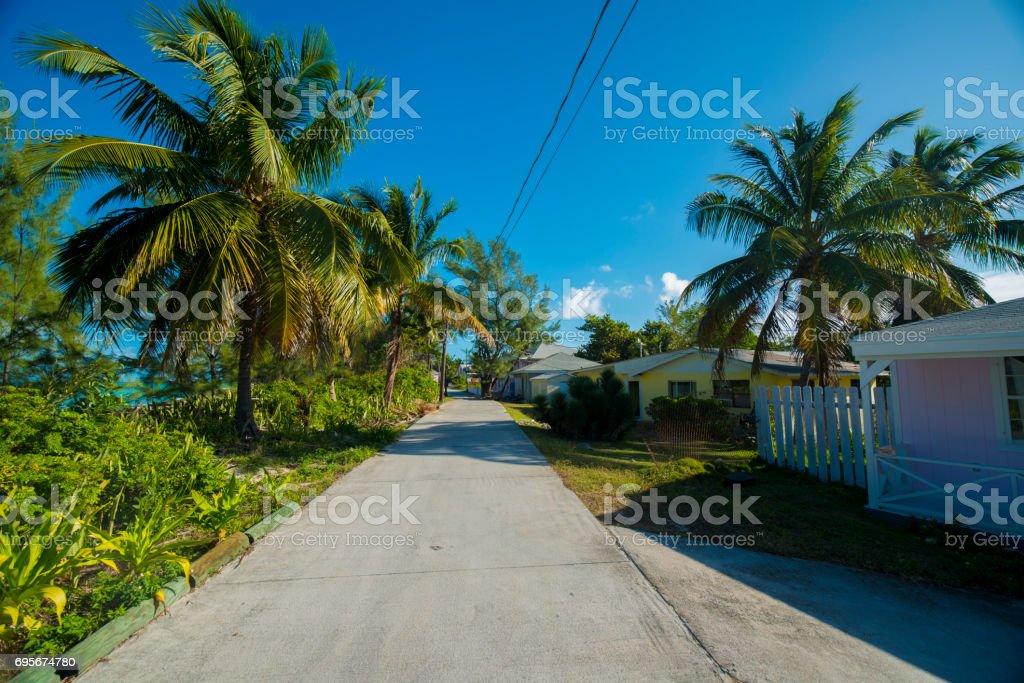 on the island of Bimini stock photo