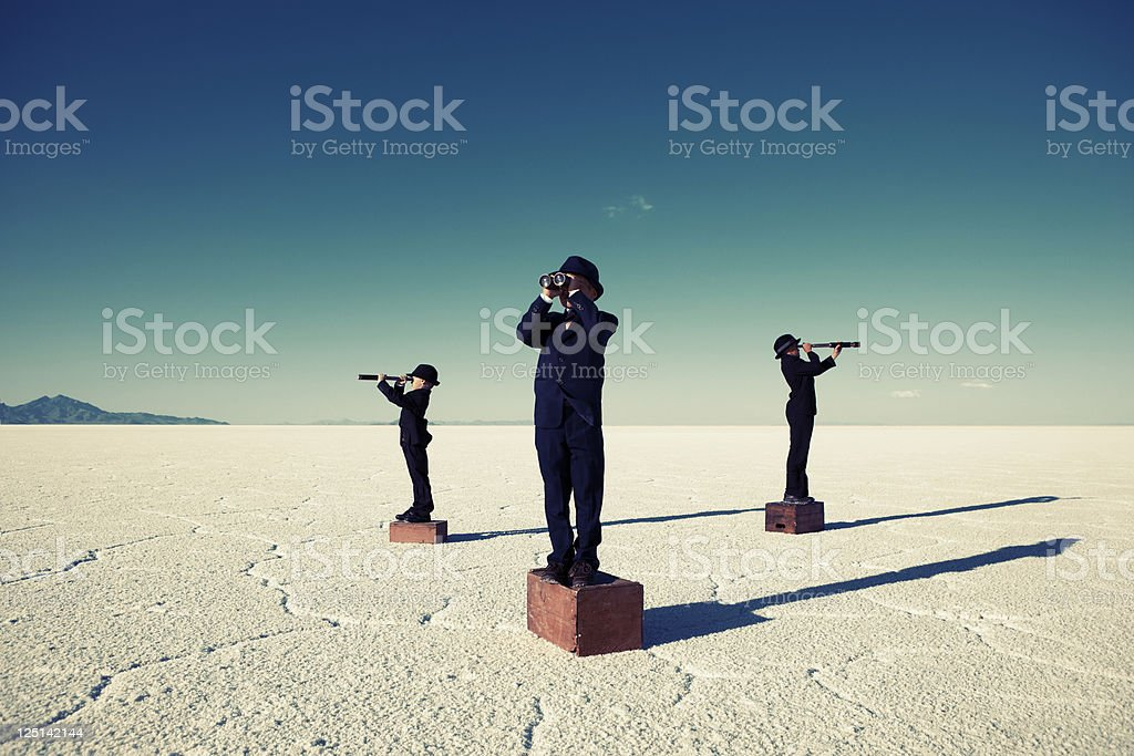 On the Lookout royalty-free stock photo