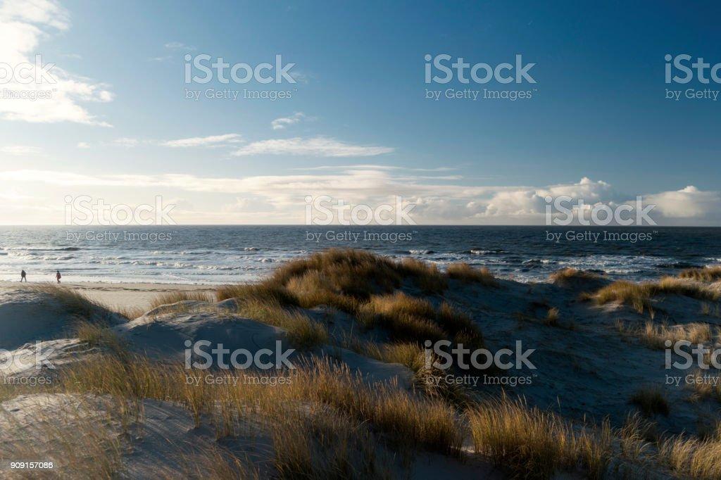 Auf der Nord friesischen Insel Amrum in Deutschland – Foto