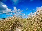 On the North Sea beach in Denmark