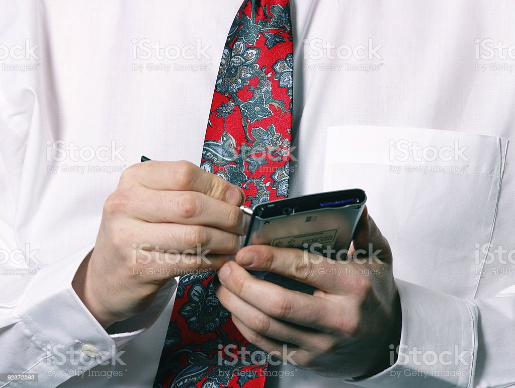 On the Palm royalty-free stock photo
