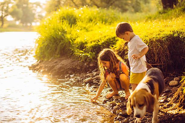 On the riverbank picture id482195918?b=1&k=6&m=482195918&s=612x612&w=0&h=dfce47pae oreomye5d0wwxnysawnpn8zimkfa50xqe=