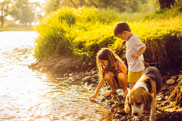 On the riverbank Portrait of a little boy, his sister and their beagle dog standing by the riverbank, playing with water riverbank stock pictures, royalty-free photos & images