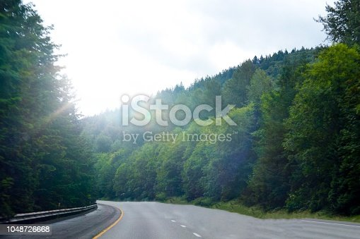 View of trees along a Washington highway.