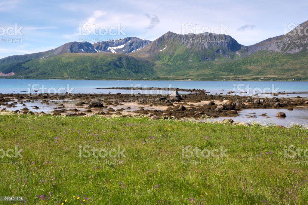 on the road along the coast of Niksund in Norway stock photo
