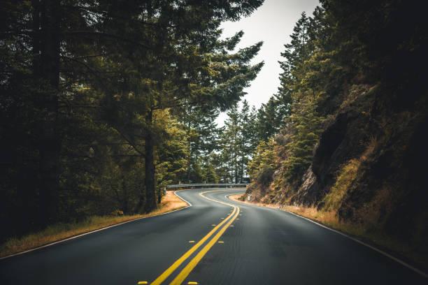 en el camino en una carretera brumosa en estados unidos - vía fotografías e imágenes de stock