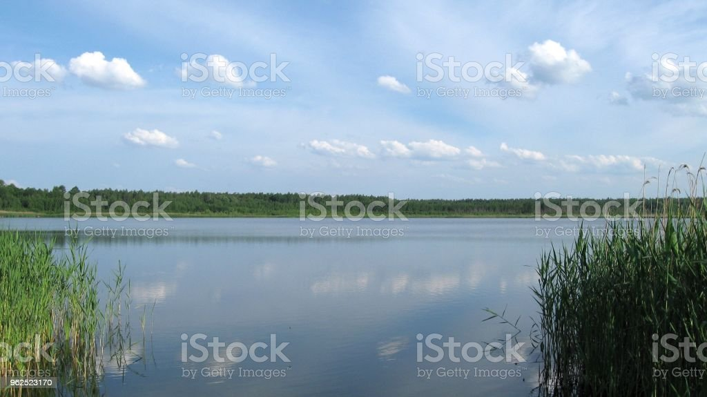 On the shore of the lake - Royalty-free Beach Stock Photo