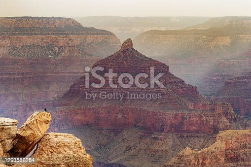 istock On the South Rim of the Grand Canyon 1293586284