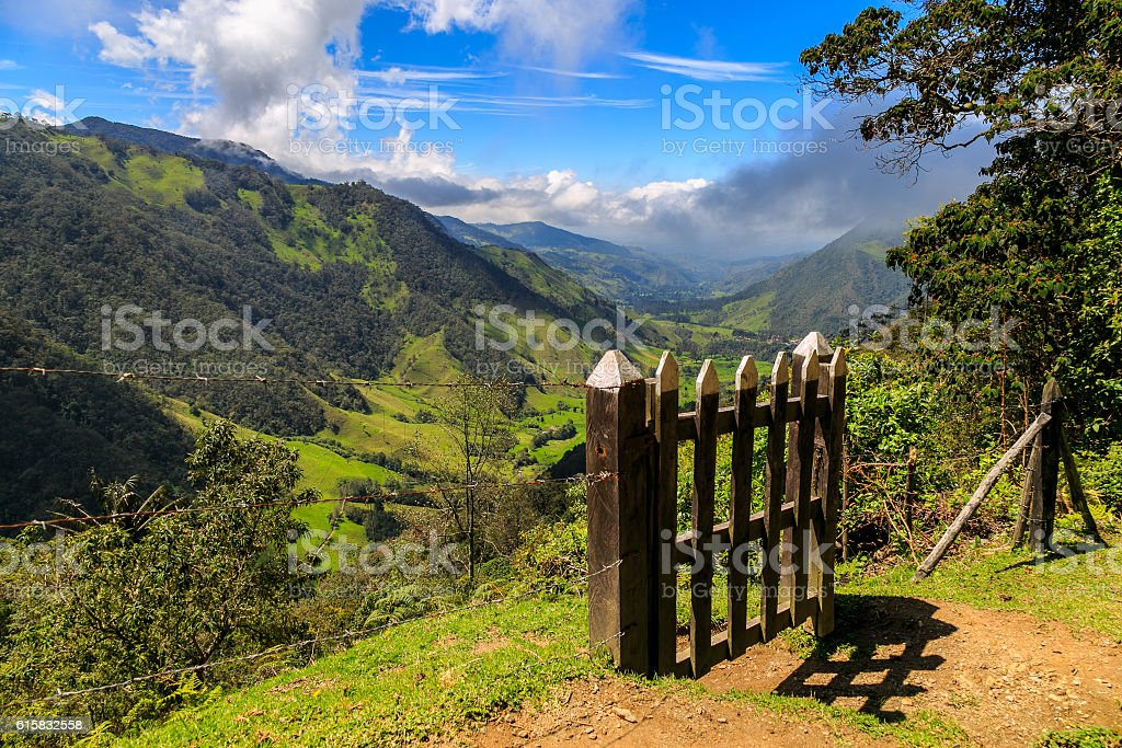 on the top of the mountain, cocora valley, colombia, volcano stock photo