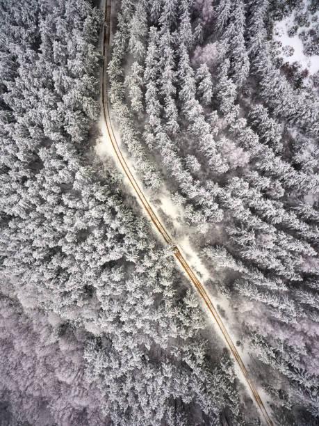 Oben auf das Holz im Winter. – Foto