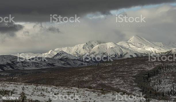On The Way To The Tall One Denali Stock Photo - Download Image Now