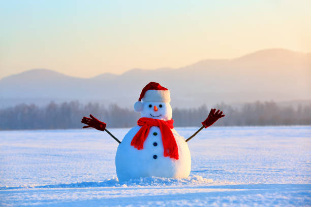On the white fluffy textured snow alone snowman the friend is standing in nice hat and scarf with red nose. Beautiful winter background. stock photo