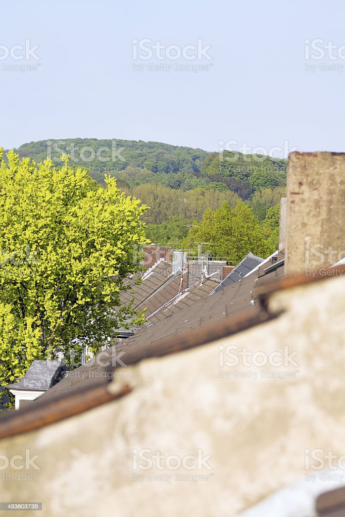 On top of roofs royalty-free stock photo