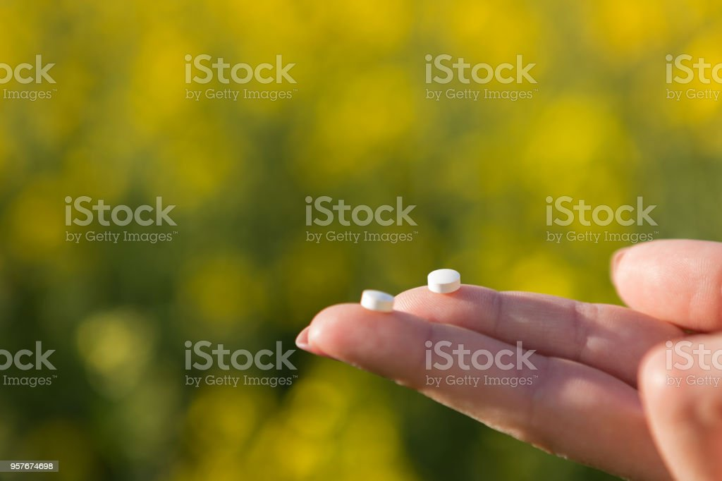 on two fingers lie two tablets from an allergy, against a background of yellow flowering rape, a concept stock photo