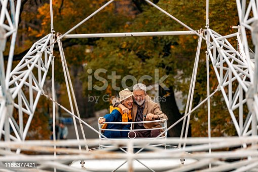 Happiness senior couple hugging while riding on ferris wheel at amusement park.