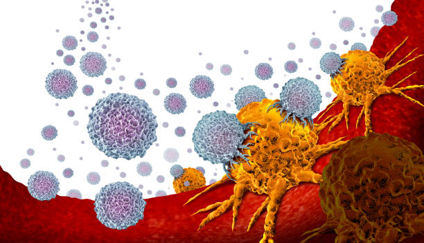 Oncology Medicine Oncology medicine and cancer treatment concept as a tumor or tumour being treated with white blood cells attacking the disease as an immunotherapy 3D illustration. metastasis stock pictures, royalty-free photos & images