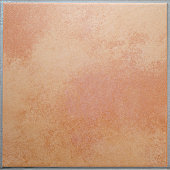 One apricot colored terracotta tile isolated background XL