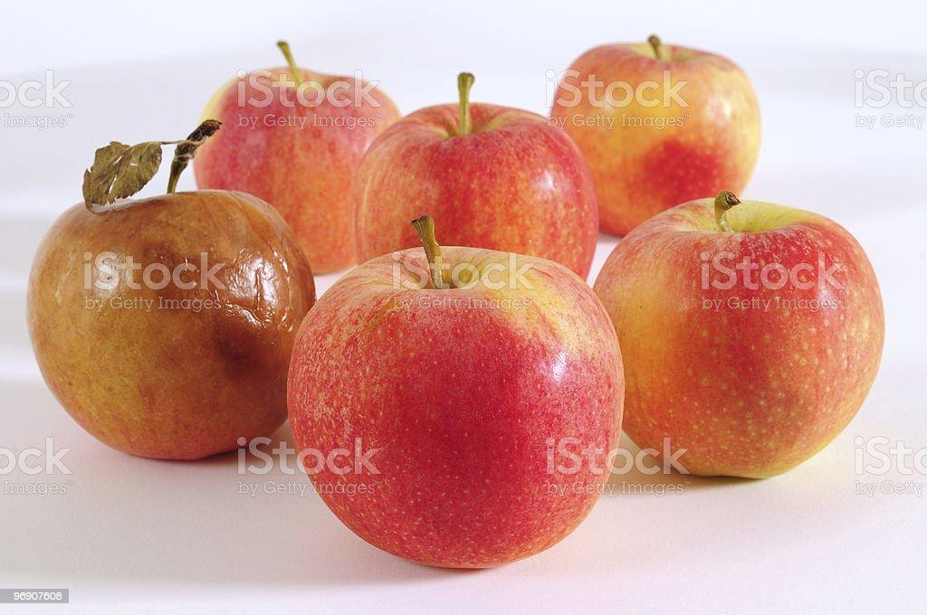 One bad apple. royalty-free stock photo