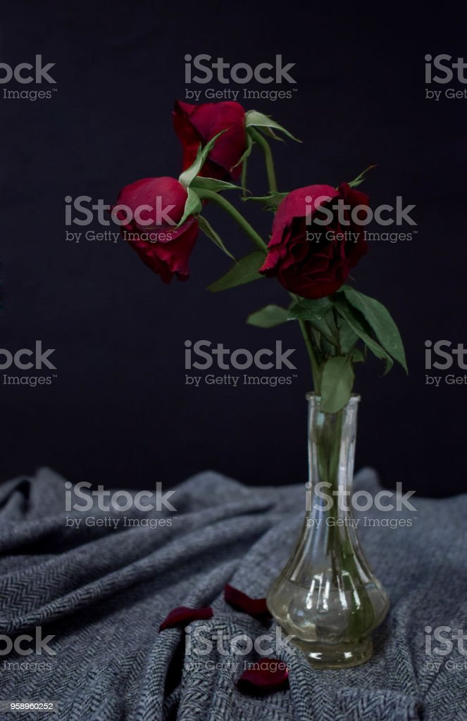 One Beautiful Red Rose Stands In A Thin Glass Vase Stock Photo