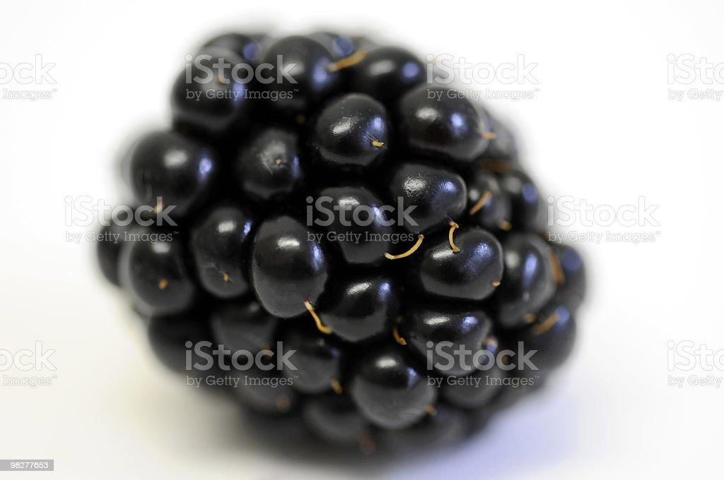 one blackberry royalty-free stock photo
