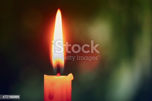 One candle in the forest.