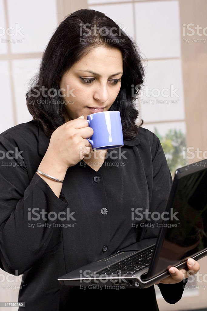One Cheerful Indian Businesswoman Using Laptop royalty-free stock photo