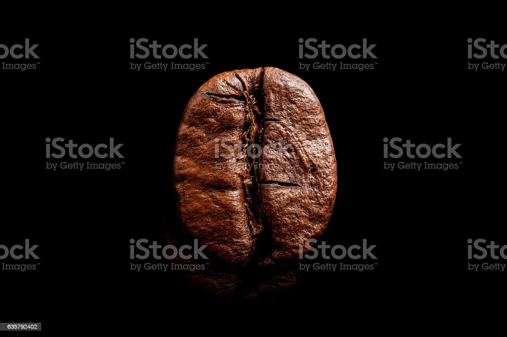 One coffee bean isolated on pure black background. – zdjęcie