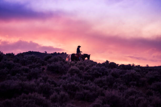 One Cowboy Rides His Horse Up The Side Of A Mountain At Sunset stock photo